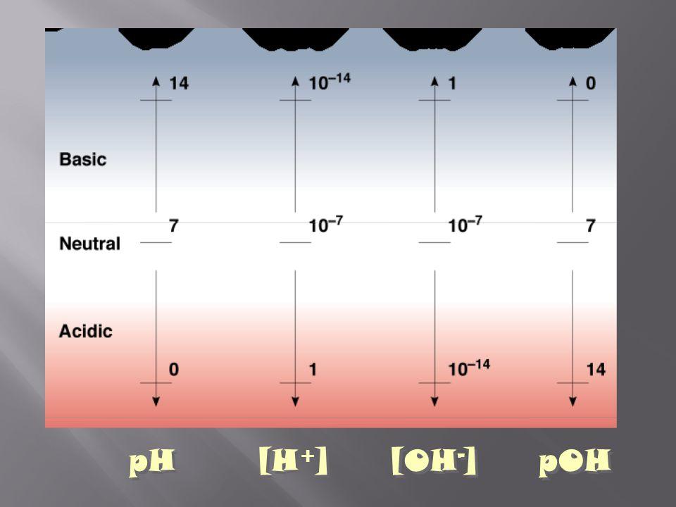 pH [H+] [OH-] pOH
